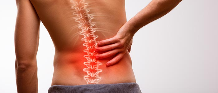 Chiropractic Raleigh NC Low Back Pain